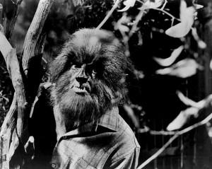 Werewolf image from Dark Shadows
