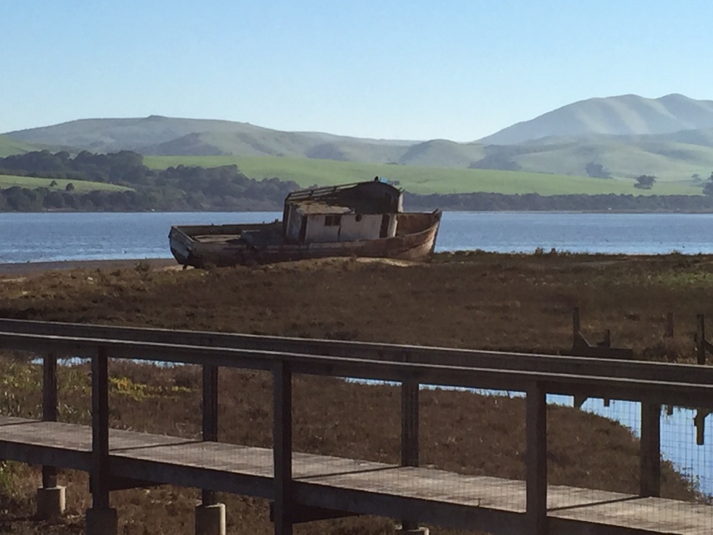 Abandoned boat on Tomales Bay